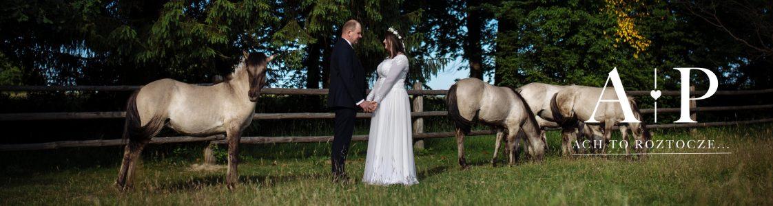 Zabezpieczony: Angelika i Paweł – ach to Roztocze